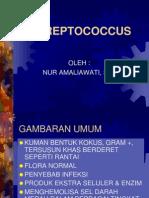 Streptococcus Sp