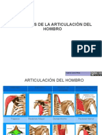 Musculos Del Hombro