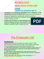 As Biology Cell Project Part 1