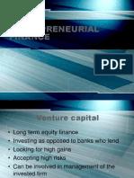 Entrepreneurial Finance 24065