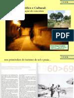 2 6 Pedro F Couteiro_PP