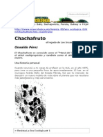 Chachafruto, llamado también Balú