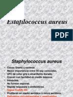 APUNTES-CLASE-DE-STAPHYLO (1)