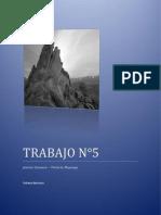 TRABAJO N°5 MAPA conceptual-mental