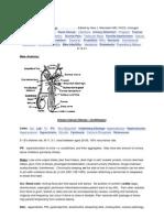 Clinical Urology