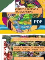 RELACIONES JURÍDICAS Y BIODIVERSIDAD