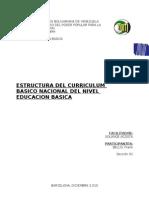 Curriculo Educacion Basica2