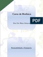 aula1_biofisica_2011_1