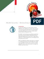 Lan Security Wp
