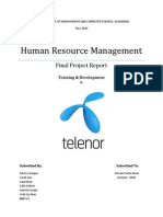 T&D HRM