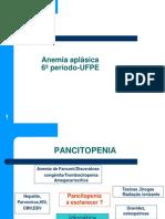 05- Anemia Aplasica