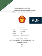 laporan fitokimia NITHA