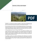 Bosques Del Litoral Ecuatoriano