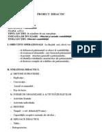 29339_proiectdidacticcontabilitate