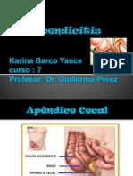2 Apendicitis-Karina Barco Yance