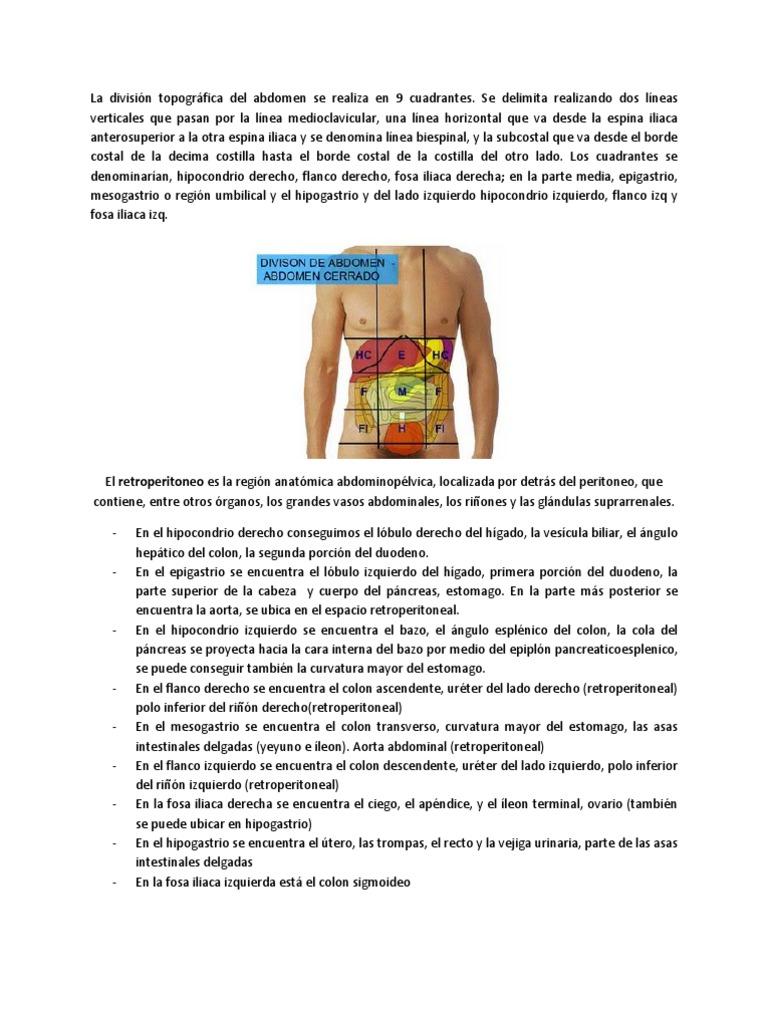 Resumen Musculos y Topografia Abdomen