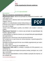 caracteristicas basicas das organizaçoes formais modernas
