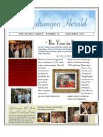 Hydrangea Herald A