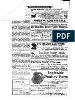 American Poultry Journal-1