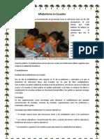 Alfabetismo en Ecuador