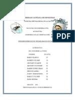 Informe de CIMENTACIONESs 2