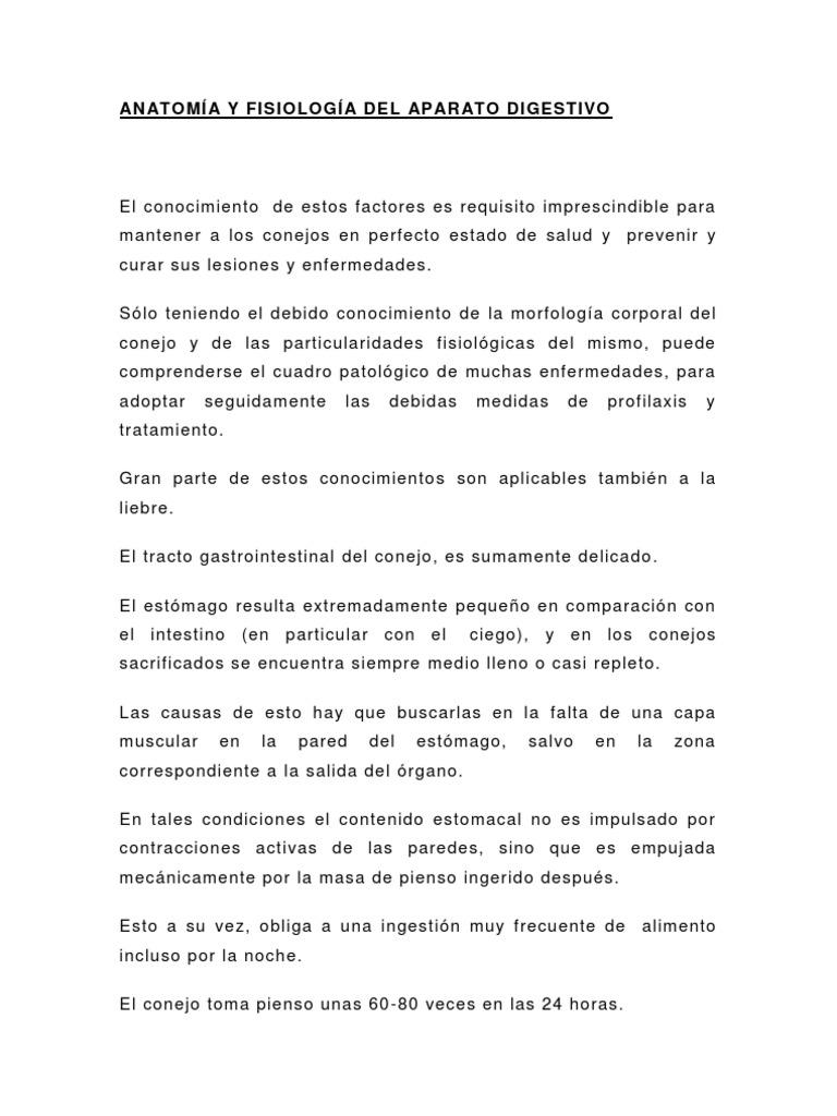 Increíble Clases De Anatomía Y Fisiología En Línea Molde - Anatomía ...