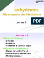 CHO L5, L6 Metabolisim 2nd Nutri