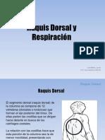_ Raquis Dorsal y Respiracion