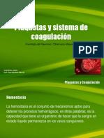 _Plaquetas y Sistema de Coagulacion