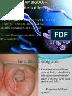 Genitales Ambiguos Armenta r3p