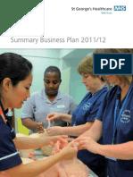 Summary Business Plan 2011 12