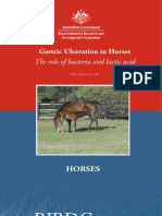 Gastric Ulceration in Horses the Role of Bacteria and Lactic Acid