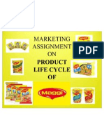 37054772 Maggi Product Life Cycle