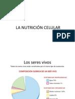 La nutrición celular