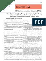 Neotropical cervidology_12[1]
