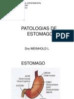 PATOLOGIAS DE ESTOMAGO