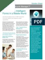 FLM Solution Sheet