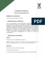 PROGRAMA PROCESOS PSICOLÓGICOS III 2011