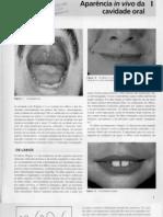 Anatomia, Embriologia e Histologia Bucal - Cap001
