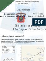 electro isoelectric