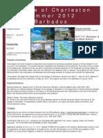 Barbados Flyer OFFICIAL