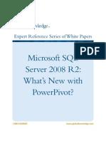 WP_MS_PowerPivot