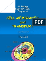As Biology Cell Membranes