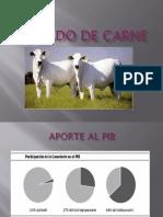 5 GANADO DE CARNE