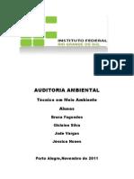 AUDITORIA AMBIENTAL.docx Trabalho Atualizado