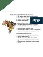 BRASIL - População (1)