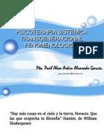 Psicoterapia Sistemica Transgeneracional Fenomenologica por Paul Alan A Alvarado García