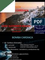 REVISIÓN FISIOLOGÍA CARDIO