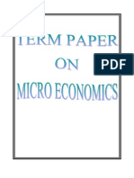 Term Paper on Micro Economics