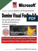Experto en Visual Foxpro 9 SP2[1]